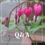 Persoonlijk   Tijd voor een Q&A   De kans om jouw vraag te stellen