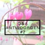Q&A  Antwoorden #2   Hoe lang blog ik & gekke gewoontes