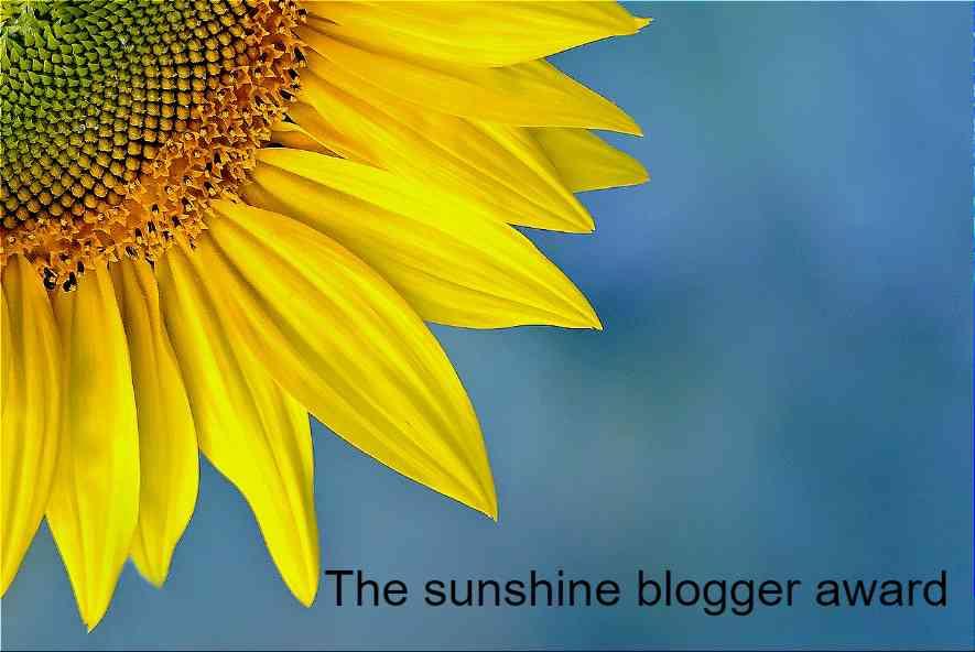 De sunshine blogger award