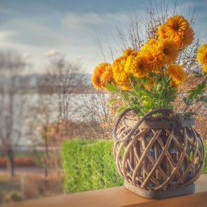 bloemen op balkon
