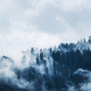 brain fog bij Lupus